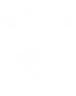 Das Siegel von Johann Sebastian Bach ist weiß auf schwarzem Grund. Es sind die drei Buchstaben JSB, einmal gespiegelt, geschrieben. Um diese Buchstaben ist eine Ranke mit kleinen Blättern, oben ist eine Krone mit 5 Zapfen.